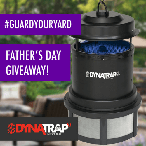 dynatrap-fathers-day-giveaway-guardyouryard