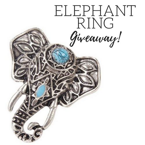 elephant-ring-giveaway