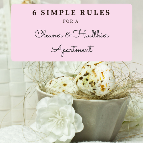 rules-cleaner-healthier-apartment