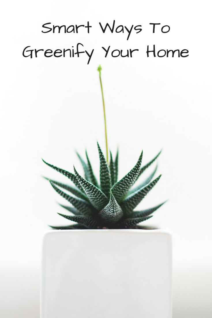 For You, For The Earth: Smart Ways to Greenify Your Home