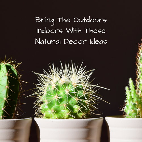 bring-outdoors-indoors