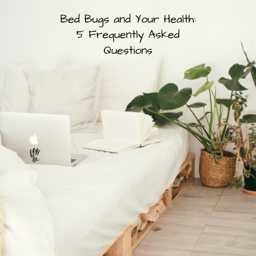 bed-bugs-health