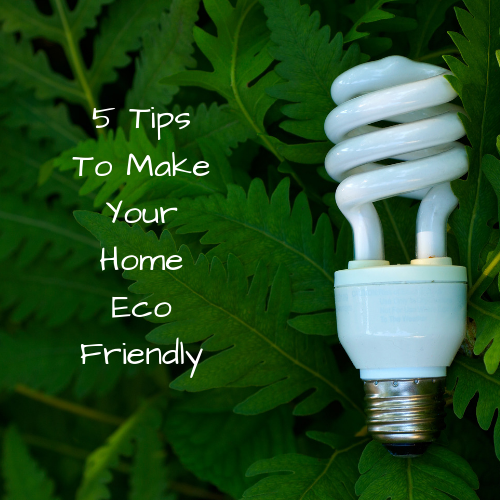 home-eco-friendly