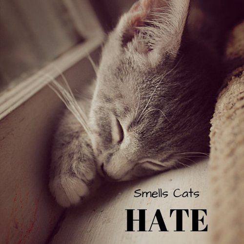 smells-cats-hate