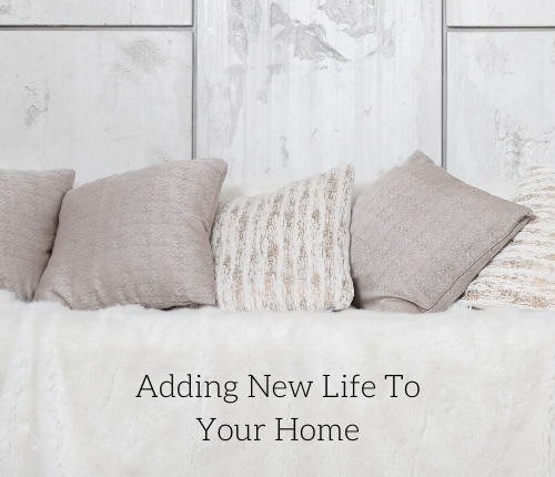 new-life-home