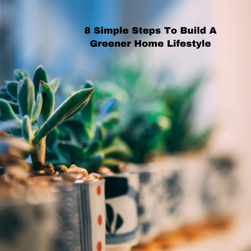 8-simple-steps-to-build-a-greener-home-lifestyle