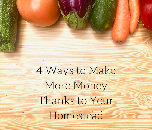 4-ways-to-make-more-money-thanks-to-your-homestead-2